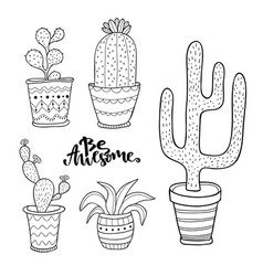 hand drawn succulent and cactus set doodle plants vector image vector image