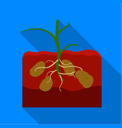 Potato icon flat single plant icon from the big vector