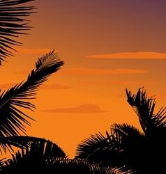 Silhouette palm plant vector