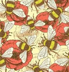 Sketch bee and poppy in vintage style vector image