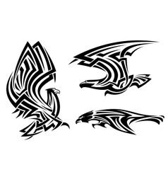 Tribal eagle hawk and falcon vector