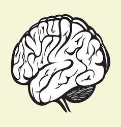 brain2 vector image
