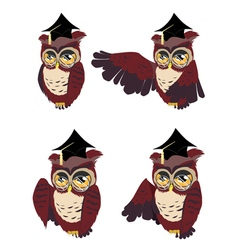 Brown wise owl2 vector