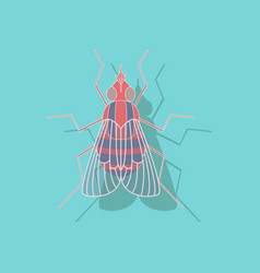 Paper sticker on background of fly vector