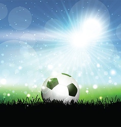 Soccer ball in grassy landscape vector