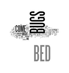 Bed bugs come from text word cloud concept vector
