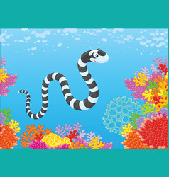 Sea snake and corals vector