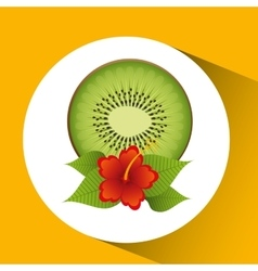 Tropical kiwi fruit and beautiful red flowers vector