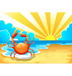 A beach with a crab vector image