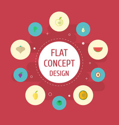 Flat icons duchess jonagold cauliflower and vector