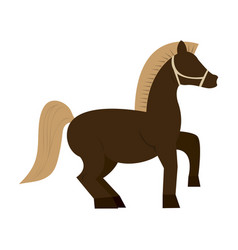 Horse cartoon icon vector
