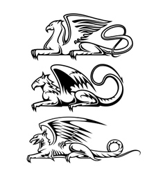 Medieval gryphons set vector image