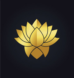 Lotus flower beauty colored gold logo vector
