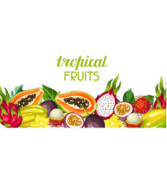 Banner with exotic tropical fruits vector