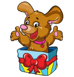 Dog in a box on a white background vector image vector image