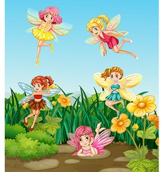 Fairies flying vector