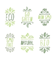 Hand-sketched typographic elements eco product vector