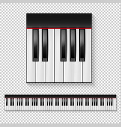 Realistic piano keys closeup isolated and vector
