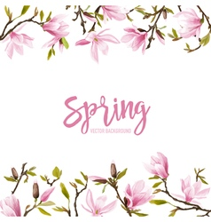 Spring blossom background - magnolia flowers vector