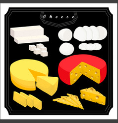 The set cheese vector