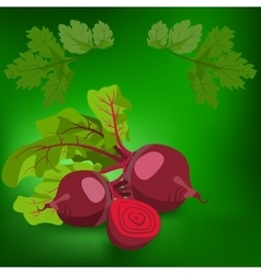 Beetroot healthy lifestile vector