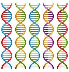 Set of dna symbols for science and medicine design vector