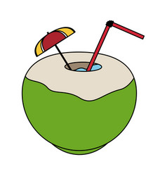 Color image cartoon coconut cocktail drink vector