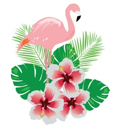 flamingos flower vector image