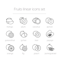 Fruits linear icons set vector image vector image