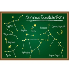 Summer constellations on chalkboard vector