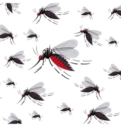 Isolated mosquito insect design vector image