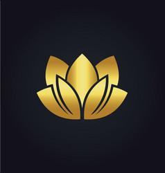 Lotus flower beauty spa gold logo vector