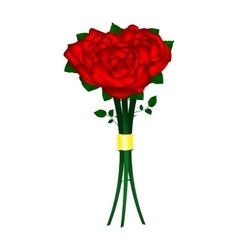 Bouquet of red roses on a white background vector
