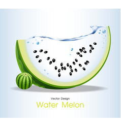 Water melon fruits design vector