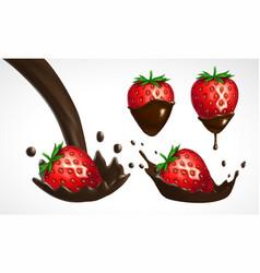 strawberry and chocolate splash set vector image