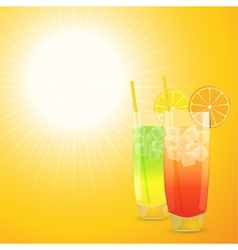 summer cocktail background vector image