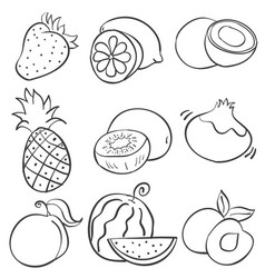 Doodle of hand draw fruit vector