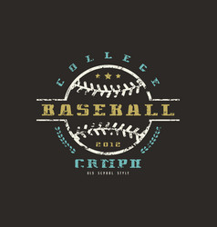 emblem of baseball college championship vector image