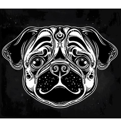 Linear style of a pug dog face vector image