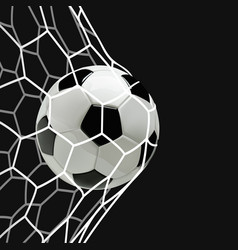 soccer or football ball in the net vector image vector image