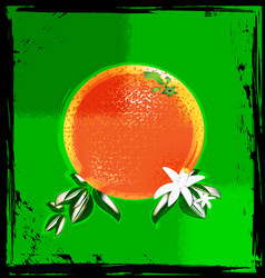 abstract green and orange vector image