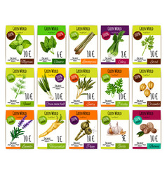 spice and herbs vegetables price tags set vector image