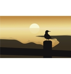 Bird at sunrise scenery vector