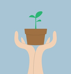Hands holding small plant growth concept vector