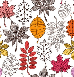 Seamless pattern of patterned autumn leaves vector