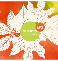 Autumn background with leaves vector