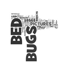 Bed bugs pictures text word cloud concept vector