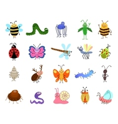 Funny bugs cute insects isolated on white vector