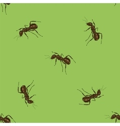 Seamless animal pattern ant isolated vector