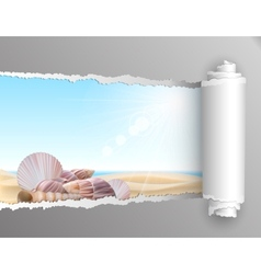 Torn paper with summer background vector image